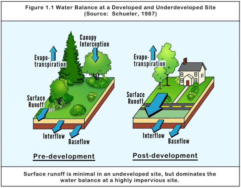 Developed land greatly increases stormwater runoff