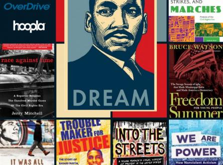 Civil Rights Book Recommendations:  race agianst time, it was all a dream, trouble maker for justice, into the streets, we are power, freedom summer for young people, boycotts, strikes, and marches